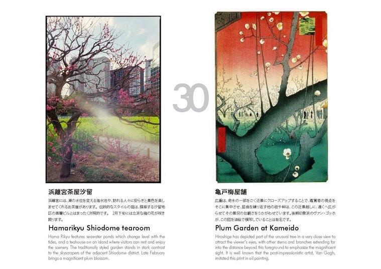 ADFWebMagazineTokyoHyaku_presentation_Page_12