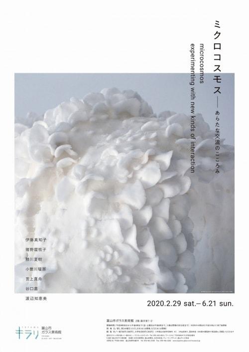adf-web-magazine-microcosmos-toyama