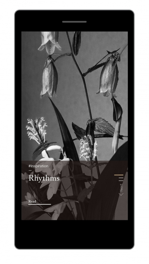 adf-web-magazine-the-kyoto
