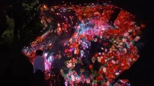 teamLab チームラボ 森のアート展「チームラボ かみさまがすまう森」九州・武雄温泉の御船山楽園で開催