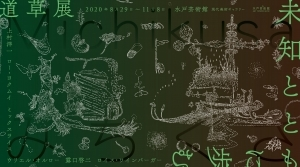 水戸芸術館「道草展:未知とともに歩む」開催