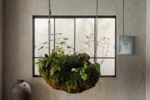植物の力を信じるTSUBAKIの「場づくり」