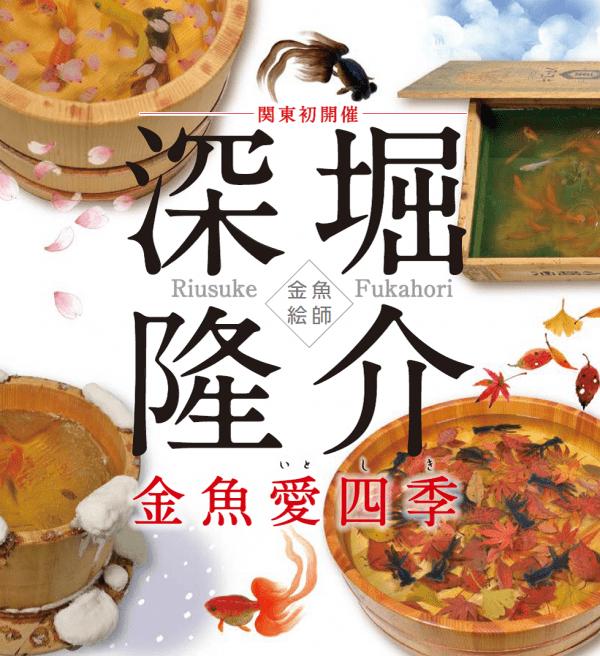 df-web-magazine-riusuke-fukahori-kingyoitoshiki
