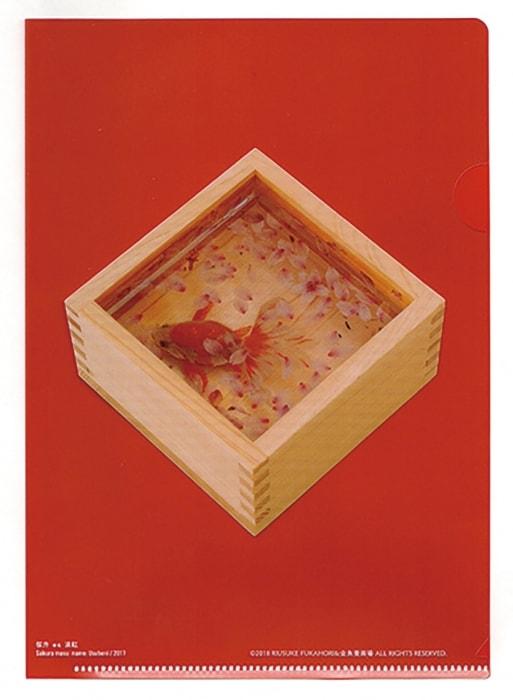 adf-web-magazine-riusuke-fukahori-kingyoitoshiki-8