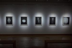 京都伝統産業ミュージアム - 町田益宏 写真展「 継ぐもの -In between crafts-」2020年10月18日まで開催中