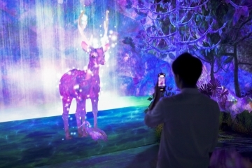 adf-web-magazine-teamlab-forest-5