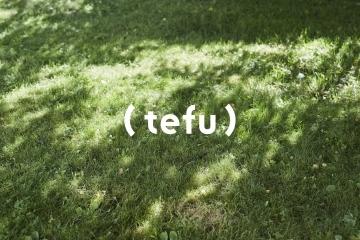 adf-web-magazine-uds-tefu-1