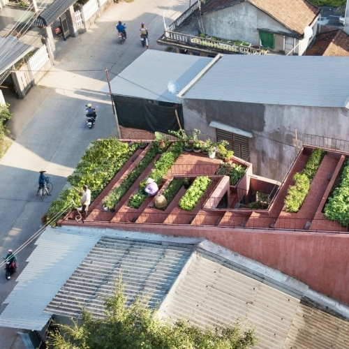 adf-web-magazine-dezeen-awards-2020-vegetable garden and multi-purpose playground on the roof contrast with surrounding iron roofs.