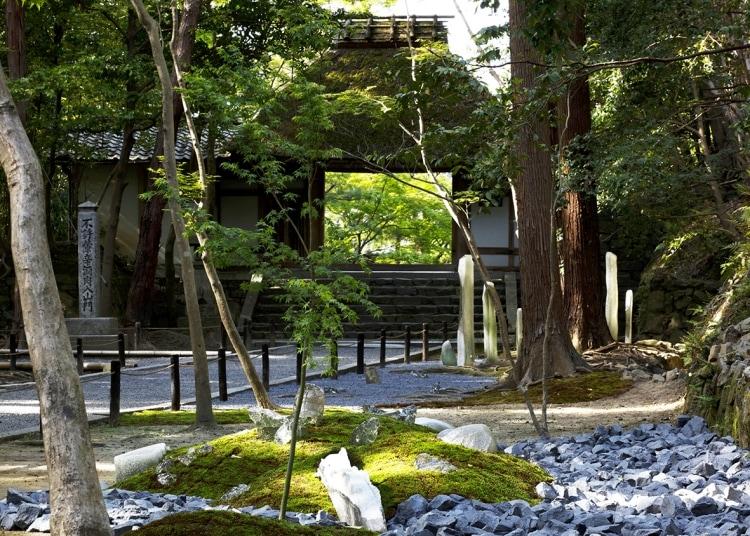 adf-web-magazine-panasonic-tokyo-sustainable-renovation-6