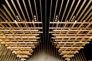 ザ・キャピトルホテル 東急 | 隈建築タクシーツアー付き宿泊プラン
