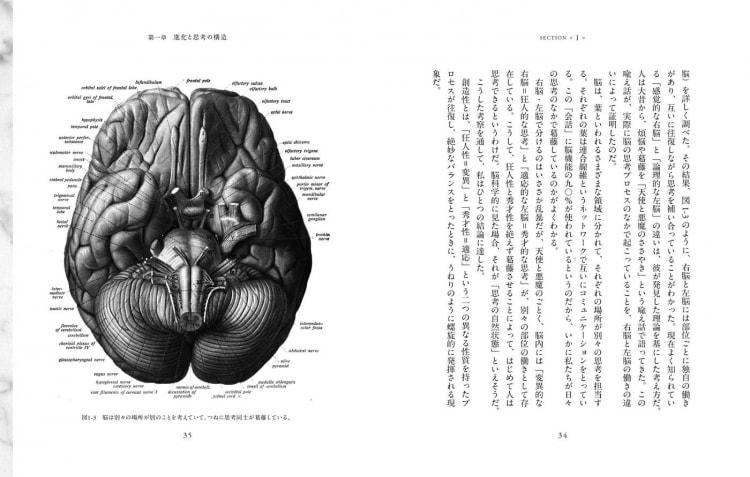 adf-web-magazine-nosigner-evolutionary-thinking-2