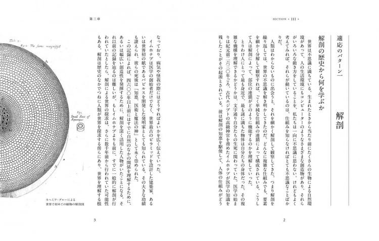 adf-web-magazine-nosigner-evolutionary-thinking-4