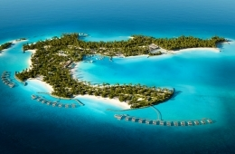 Blackhaus - Mk27 Maldivas Patina