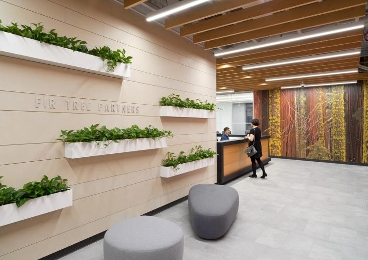 Fir Tree Partners, NY