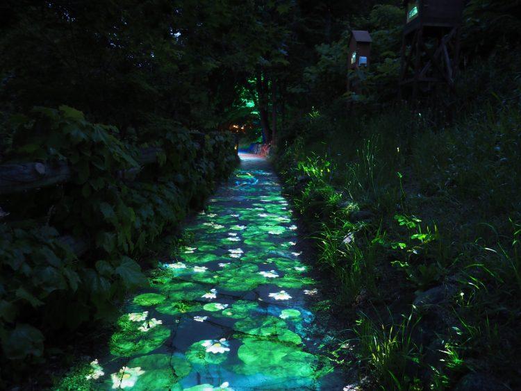 adf-web-magazine-naked-jozankei-nature-luminarie-water-light-valley-4.jpg