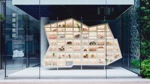 資生堂銀座オフィスのウィンドウアート - SHISEIDO×HAKUTEN「銀座の生態からサステナビリティを考える」GINZA Sustainability Project