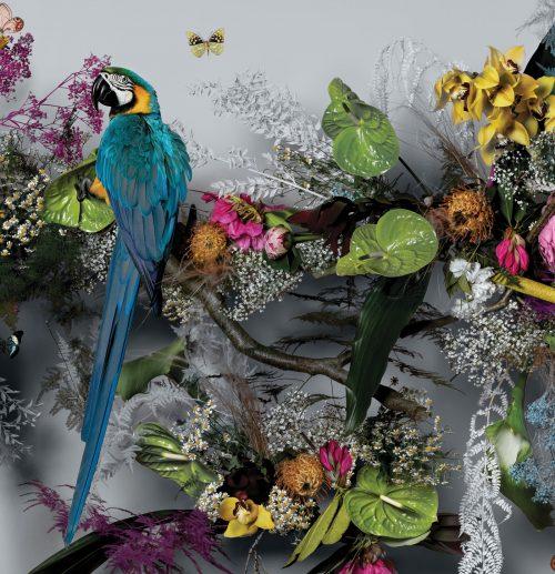 adf-web-magazine-feathr-claire-luxton-wedgwood-wonderlust-5.jpg
