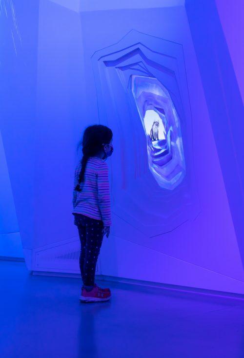 adf-web-magazine-museum-of-science-boston-moment-factory-arctic-adventure-8.jpg