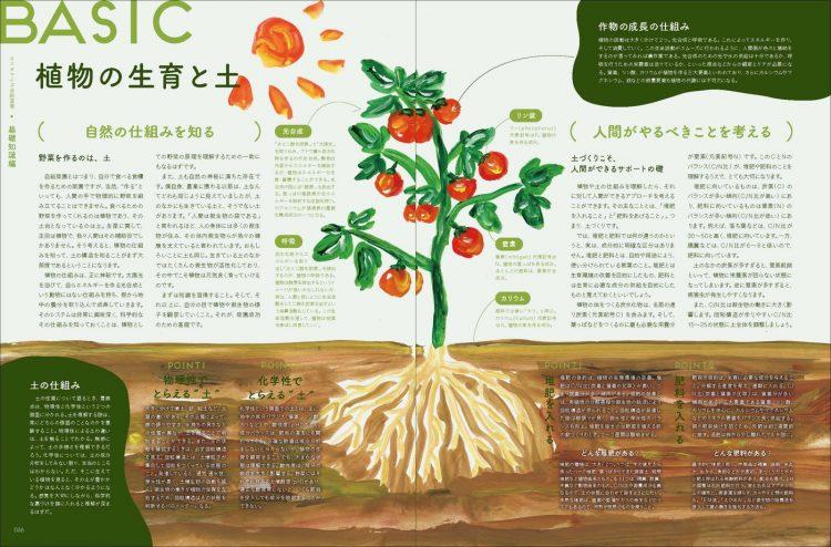 adf-web-magazine-soil-mag-2