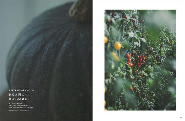 adf-web-magazine-soil-mag-7