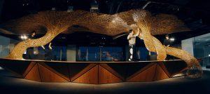 丹青社×四代田辺竹雲斎が新たな工芸体験空間を具現化する共創プロジェクトを始動