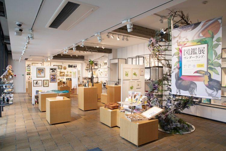 adf-web-magazine-tokyo-university-of-the-arts-picture-book-exhibition-wonderland