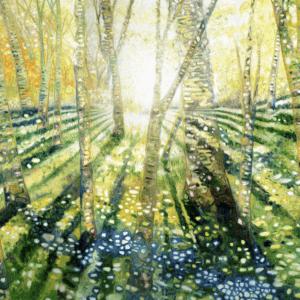 大岩オスカール「光をめざす旅」 金沢21世紀美術館