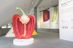 日本におけるゼロウェイスト・デザイン: 「ZENB」の世界が体験できる「野菜とデザイン」21_21 Design Sight