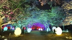 「チームラボ 福岡城跡 光の祭 2019-2020」|teamLab