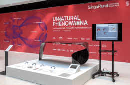 Singaplural2019-Unnatural Phenommena